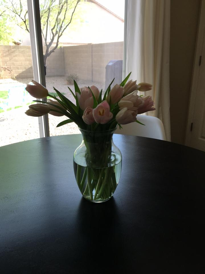 Kitchen Tulips - Post 2