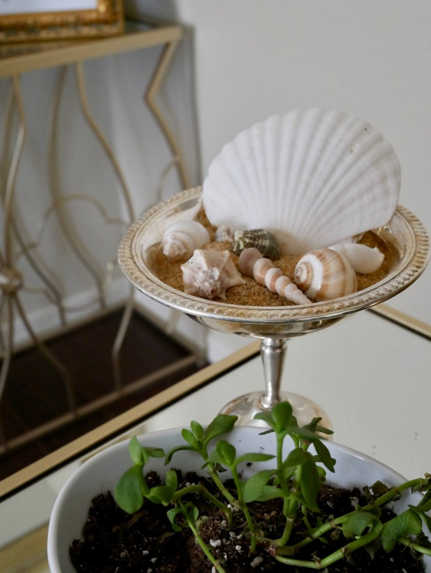Side Table Shell Centerpiece Tall