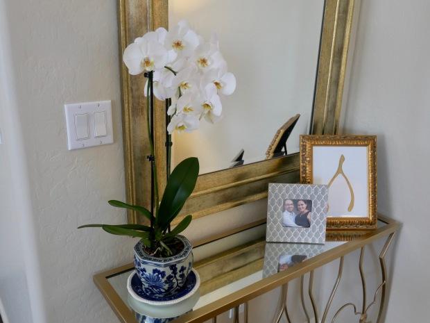 Orchid Vignette 2